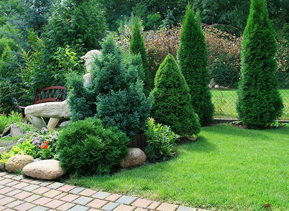Paysagiste création jardin Vire