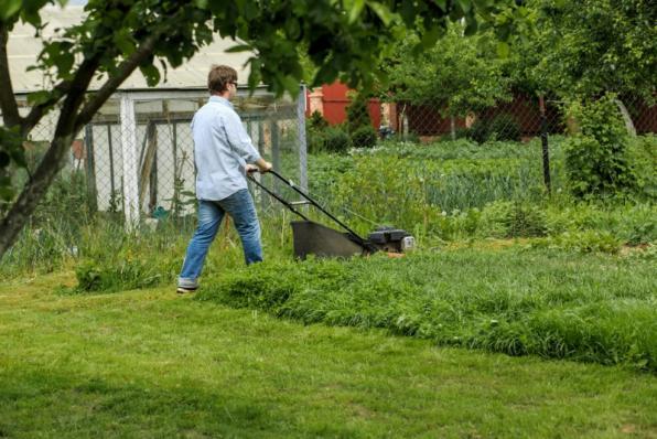 Jardinier tonte pelouse Vire